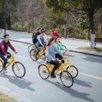 中国の大学で必需品の自転車
